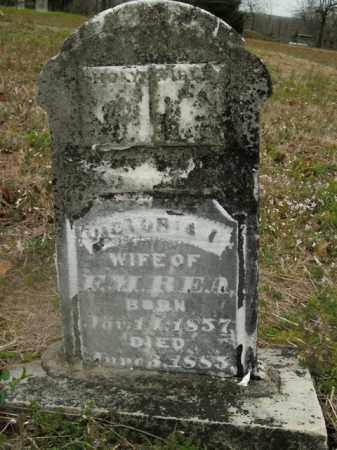 REA, VICTORIA - Boone County, Arkansas   VICTORIA REA - Arkansas Gravestone Photos