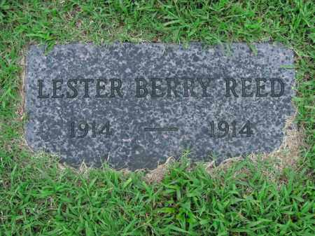 REED, LESTER BERRY - Boone County, Arkansas | LESTER BERRY REED - Arkansas Gravestone Photos