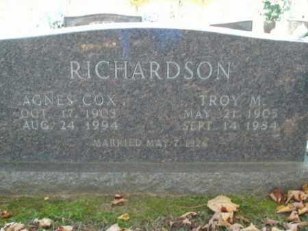 RICHARDSON, AGNES - Boone County, Arkansas | AGNES RICHARDSON - Arkansas Gravestone Photos