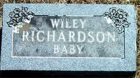 RICHARDSON, WILEY - Boone County, Arkansas | WILEY RICHARDSON - Arkansas Gravestone Photos