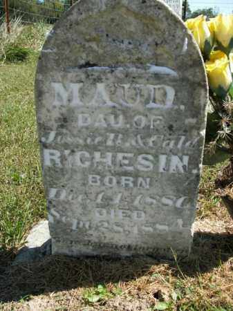 RICHESIN, MAUD - Boone County, Arkansas | MAUD RICHESIN - Arkansas Gravestone Photos