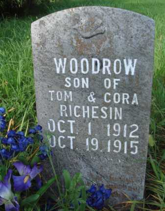 RICHESIN, WOODROW - Boone County, Arkansas | WOODROW RICHESIN - Arkansas Gravestone Photos