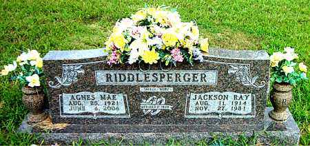 RIDDLESPERGER, JACKSON RAY - Boone County, Arkansas | JACKSON RAY RIDDLESPERGER - Arkansas Gravestone Photos