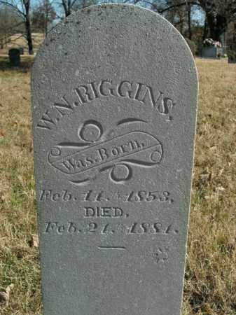 RIGGINS, W.N. - Boone County, Arkansas | W.N. RIGGINS - Arkansas Gravestone Photos