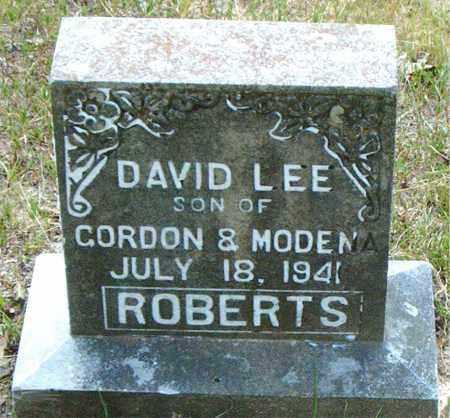 ROBERTS, DAVID LEE - Boone County, Arkansas | DAVID LEE ROBERTS - Arkansas Gravestone Photos