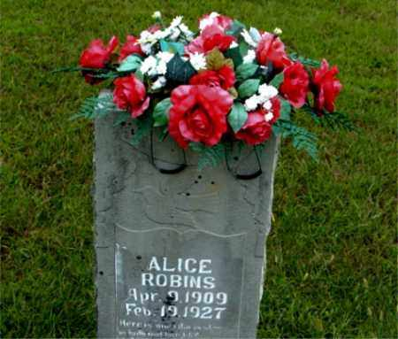 ROBINS, ALICE - Boone County, Arkansas   ALICE ROBINS - Arkansas Gravestone Photos