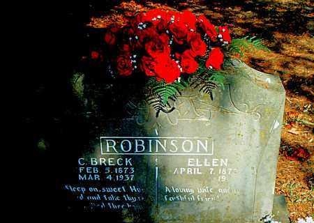 ROBINSON, COLUMBUS BRECKINRIDGE - Boone County, Arkansas | COLUMBUS BRECKINRIDGE ROBINSON - Arkansas Gravestone Photos