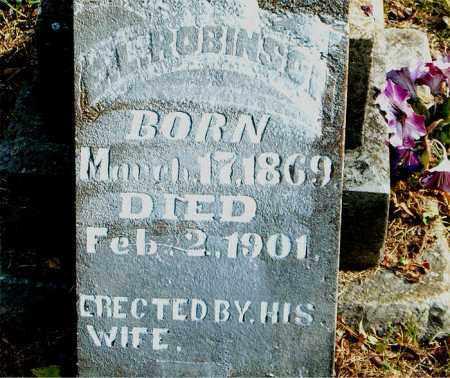 ROBINSON, E.  L. - Boone County, Arkansas | E.  L. ROBINSON - Arkansas Gravestone Photos