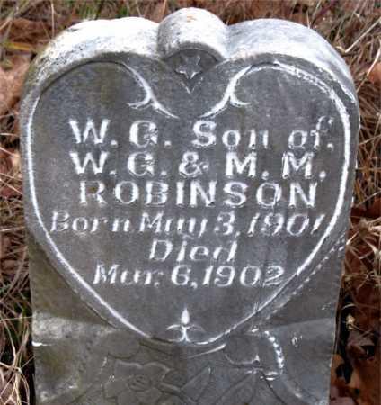 ROBINSON, W. G. - Boone County, Arkansas   W. G. ROBINSON - Arkansas Gravestone Photos