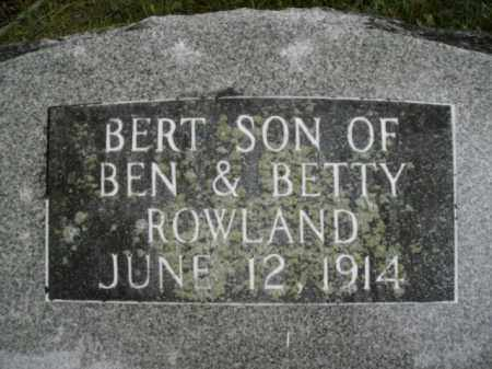 ROWLAND, BERT - Boone County, Arkansas | BERT ROWLAND - Arkansas Gravestone Photos