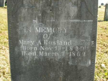 ROWLAND, MARY A. - Boone County, Arkansas | MARY A. ROWLAND - Arkansas Gravestone Photos