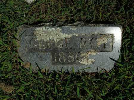 ROY, CLYDE - Boone County, Arkansas | CLYDE ROY - Arkansas Gravestone Photos