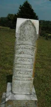 RUARK, HENRY (REV) - Boone County, Arkansas | HENRY (REV) RUARK - Arkansas Gravestone Photos