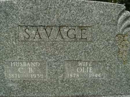 SAVAGE, OLIE - Boone County, Arkansas | OLIE SAVAGE - Arkansas Gravestone Photos