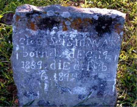 SCISM, CLOE - Boone County, Arkansas   CLOE SCISM - Arkansas Gravestone Photos
