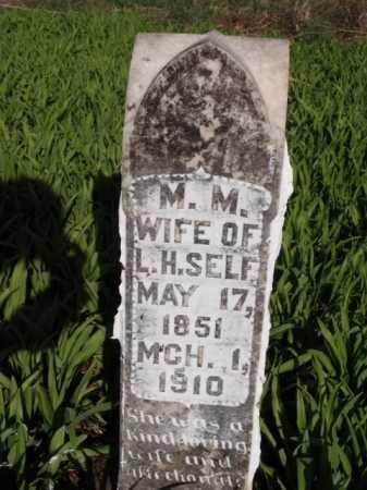 SELF, M.  M. - Boone County, Arkansas | M.  M. SELF - Arkansas Gravestone Photos