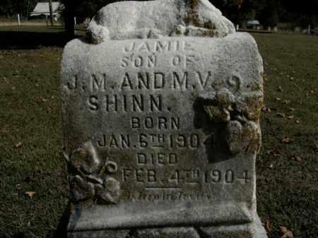 SHINN, JAMIE - Boone County, Arkansas | JAMIE SHINN - Arkansas Gravestone Photos