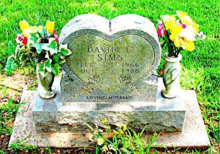 SIMS, DAVID LYNN - Boone County, Arkansas | DAVID LYNN SIMS - Arkansas Gravestone Photos