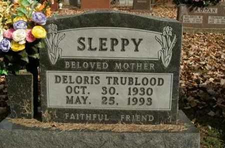 TRUBLOOD SLEPPY, DELORIS - Boone County, Arkansas | DELORIS TRUBLOOD SLEPPY - Arkansas Gravestone Photos
