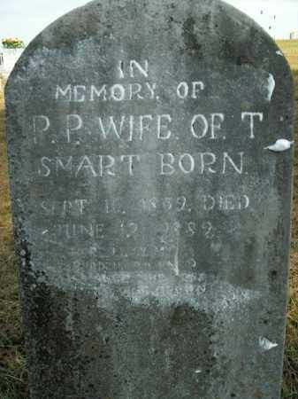 SMART, P.P. - Boone County, Arkansas | P.P. SMART - Arkansas Gravestone Photos