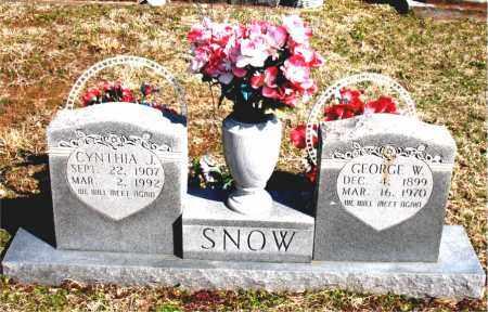 TURNEY SNOW, CYNTHIA JOSIE - Boone County, Arkansas | CYNTHIA JOSIE TURNEY SNOW - Arkansas Gravestone Photos