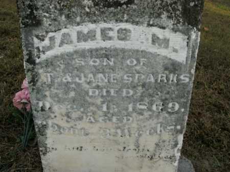 SPARKS, JAMES M. - Boone County, Arkansas | JAMES M. SPARKS - Arkansas Gravestone Photos