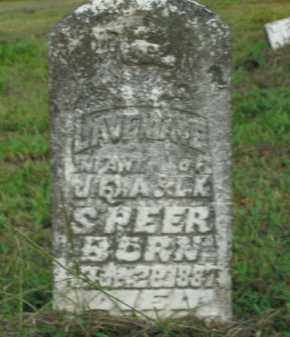 SPEER, LAVENIA - Boone County, Arkansas   LAVENIA SPEER - Arkansas Gravestone Photos