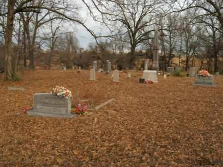 *SPEER CEMETERY OVERVIEW,  - Boone County, Arkansas |  *SPEER CEMETERY OVERVIEW - Arkansas Gravestone Photos