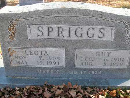 SPRIGGS, LEOTA - Boone County, Arkansas   LEOTA SPRIGGS - Arkansas Gravestone Photos