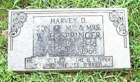 SPRINGER, HARVEY  D. - Boone County, Arkansas | HARVEY  D. SPRINGER - Arkansas Gravestone Photos