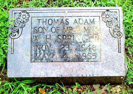 SPRINGER, THOMAS  ADAM - Boone County, Arkansas | THOMAS  ADAM SPRINGER - Arkansas Gravestone Photos