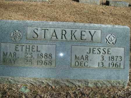STARKEY, ETHEL - Boone County, Arkansas | ETHEL STARKEY - Arkansas Gravestone Photos