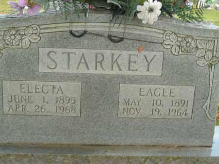 STARKEY, EAGLE - Boone County, Arkansas   EAGLE STARKEY - Arkansas Gravestone Photos