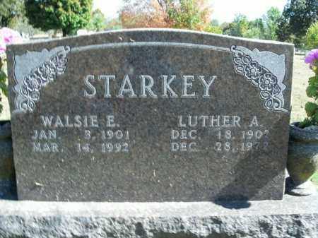 STARKEY, LUTHER A. - Boone County, Arkansas | LUTHER A. STARKEY - Arkansas Gravestone Photos