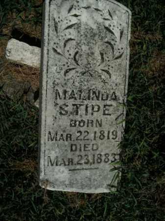 STIPE, MALINDA - Boone County, Arkansas | MALINDA STIPE - Arkansas Gravestone Photos