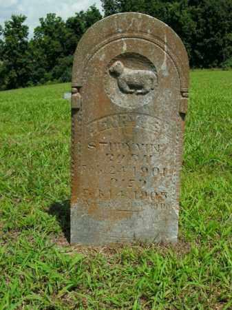 STUDYVIN, HENRY S. - Boone County, Arkansas | HENRY S. STUDYVIN - Arkansas Gravestone Photos