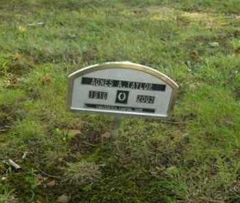 TAYLOR, AGNES A. - Boone County, Arkansas | AGNES A. TAYLOR - Arkansas Gravestone Photos