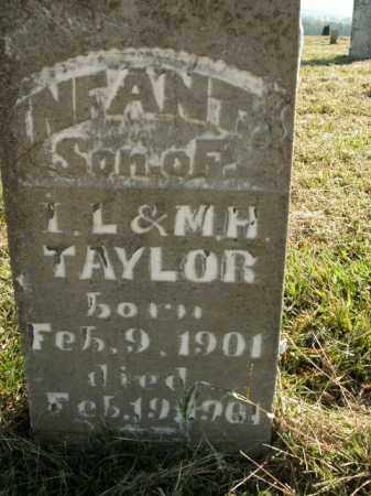 TAYLOR, INFANT SON - Boone County, Arkansas | INFANT SON TAYLOR - Arkansas Gravestone Photos
