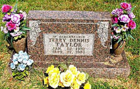TAYLOR, TERRY DENNIS - Boone County, Arkansas | TERRY DENNIS TAYLOR - Arkansas Gravestone Photos