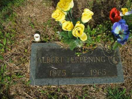 TERPENING, ALBERT - Boone County, Arkansas | ALBERT TERPENING - Arkansas Gravestone Photos