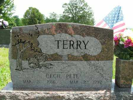TERRY, CECIL PETE - Boone County, Arkansas   CECIL PETE TERRY - Arkansas Gravestone Photos