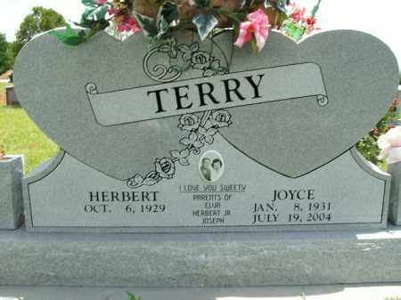 TERRY, JOYCE - Boone County, Arkansas | JOYCE TERRY - Arkansas Gravestone Photos