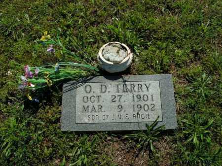 TERRY, O.D. - Boone County, Arkansas   O.D. TERRY - Arkansas Gravestone Photos