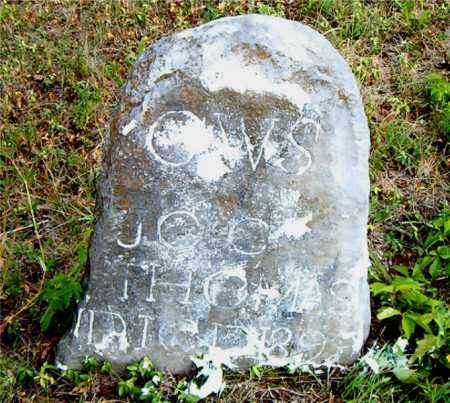THOMAS, G. W. S. - Boone County, Arkansas | G. W. S. THOMAS - Arkansas Gravestone Photos
