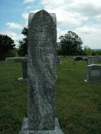 THOMPSON, S. B. - Boone County, Arkansas | S. B. THOMPSON - Arkansas Gravestone Photos