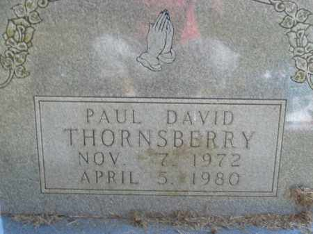 THORNSBERRY, PAUL DAVID - Boone County, Arkansas | PAUL DAVID THORNSBERRY - Arkansas Gravestone Photos
