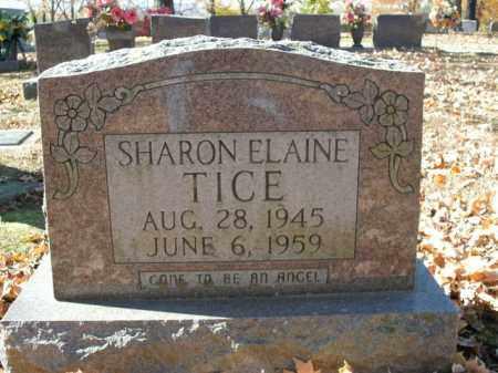 TICE, SHARON ELAINE - Boone County, Arkansas   SHARON ELAINE TICE - Arkansas Gravestone Photos