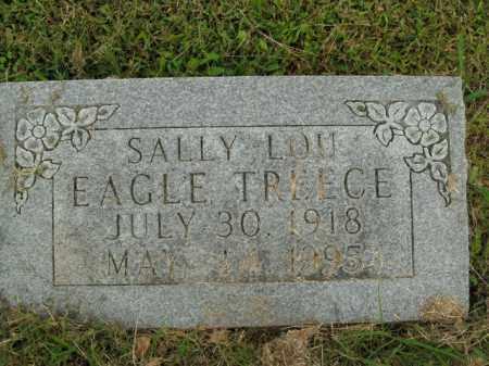 TREECE, SALLY LOU - Boone County, Arkansas   SALLY LOU TREECE - Arkansas Gravestone Photos