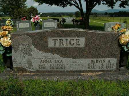 TRICE, ANNA LEA - Boone County, Arkansas | ANNA LEA TRICE - Arkansas Gravestone Photos