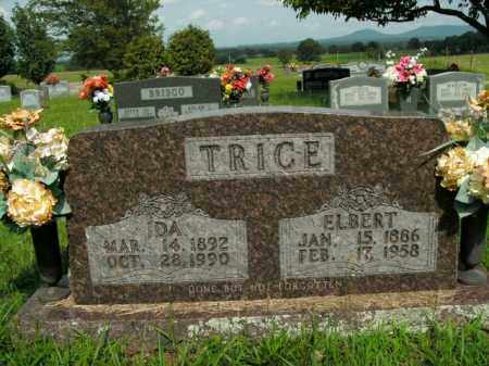 TRICE, JAMES ELBERT - Boone County, Arkansas | JAMES ELBERT TRICE - Arkansas Gravestone Photos